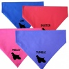 American Cocker Spaniel Personalised Dog Bandanas - Fit To Collar