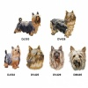 Australian Silky Terrier Personalised Dog Towels Standard Range - Face Cloth