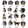 Bernese Mountain Dog Personalised Luxury Fleece Dog Blankets Pale Stars Design
