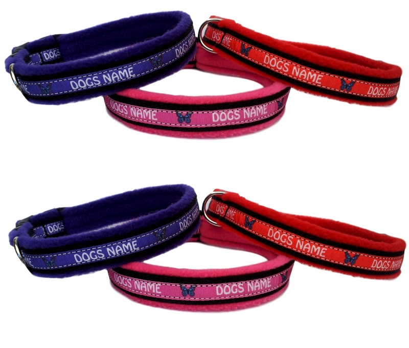 Personalised Dog Collars - Name Or Number
