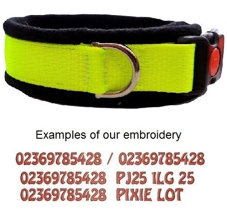Personalised Dog Collars High Visibility