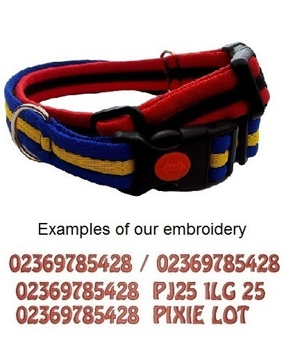 Padded Webbing Personalised Dog Collars For Small  Dogs