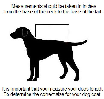 How to measure for dog coats