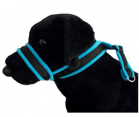 Fleece Lined Dog Head Collars