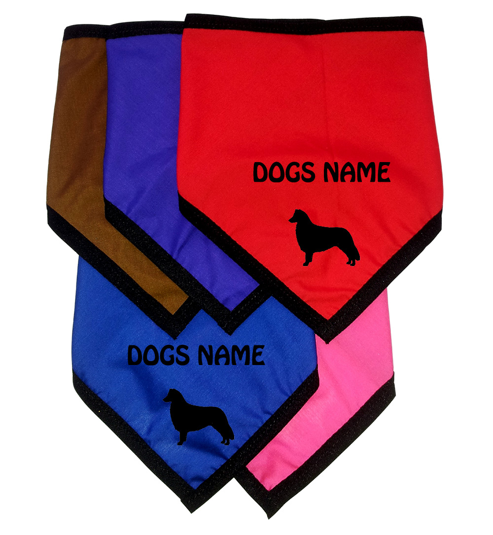 Border Collie Personalised Dog Bandanas - Tie On