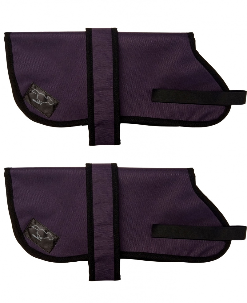 Australian Cattle Dog Personalised Waterproof Dog Coats | Deep Purple