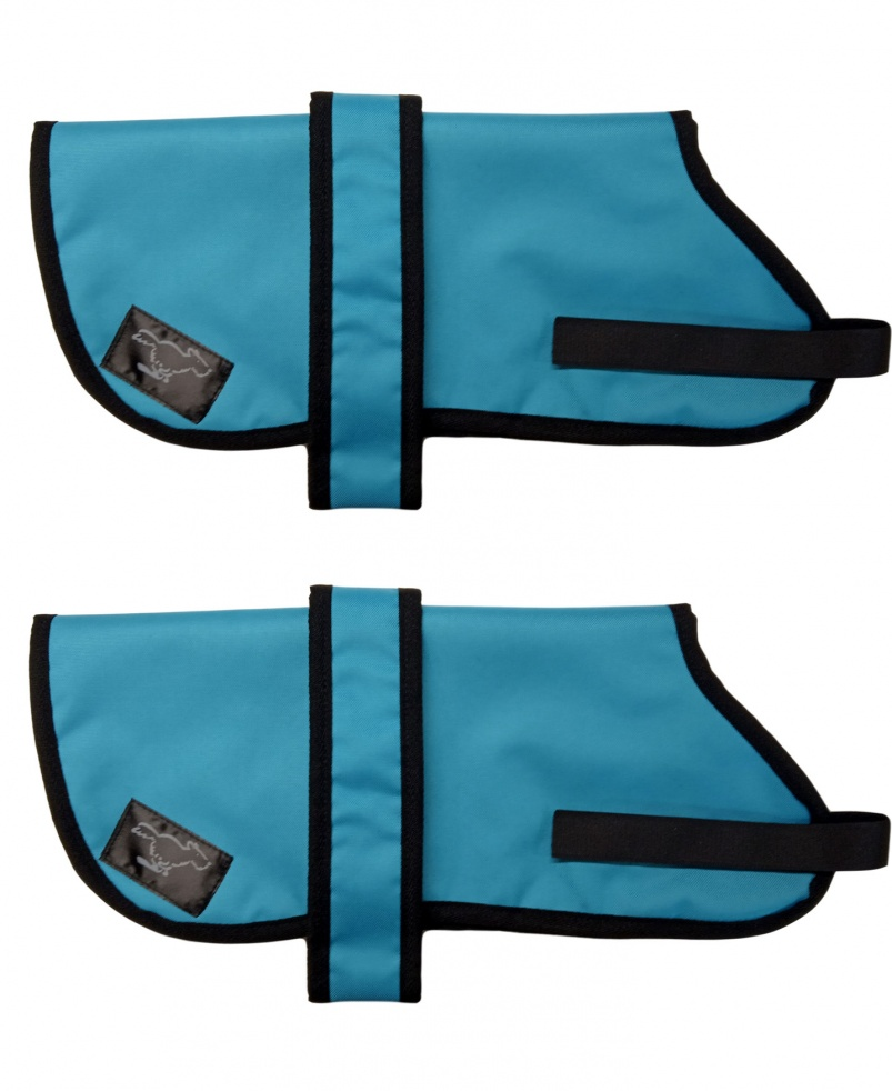 Border Collie Personalised Waterproof Dog Coats | Turquoise